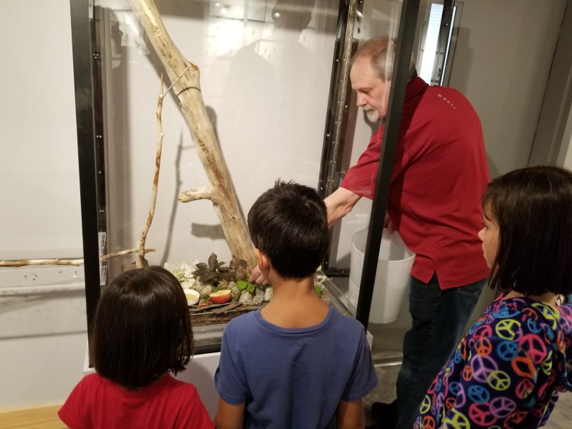 """Lloyd, owner of the Newfouland Insectarium and Butterfly Garden, """"feeding"""" the leaf cutter ant colony, with three children watching."""