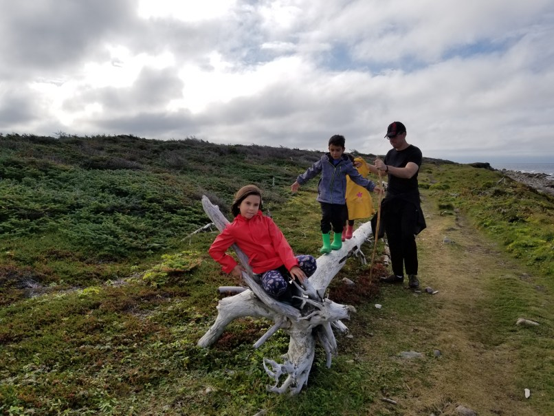 girl sitting on log, with two children walking on the log behind her, being helped by their dad, in Gros Morne National Park, Newfoundland (coastal trail)
