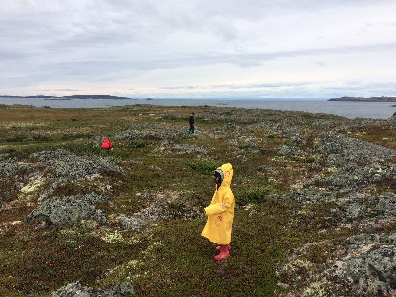 three children in raincoats exploring L'Ans Aux Meadows National Historic site; faces not visible. The freedom of homeschooling, www.marianamcdougall.com