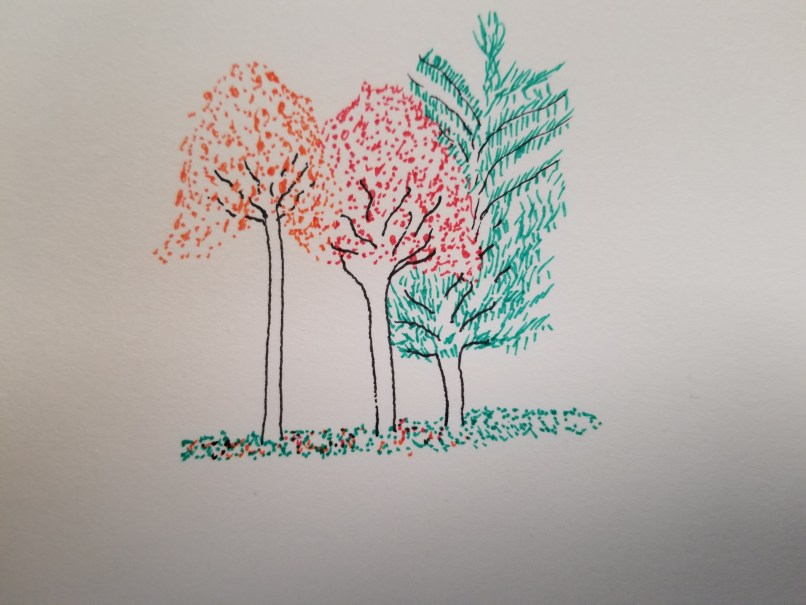 fall colours trees sketch by Mariana Abeid-McDougall