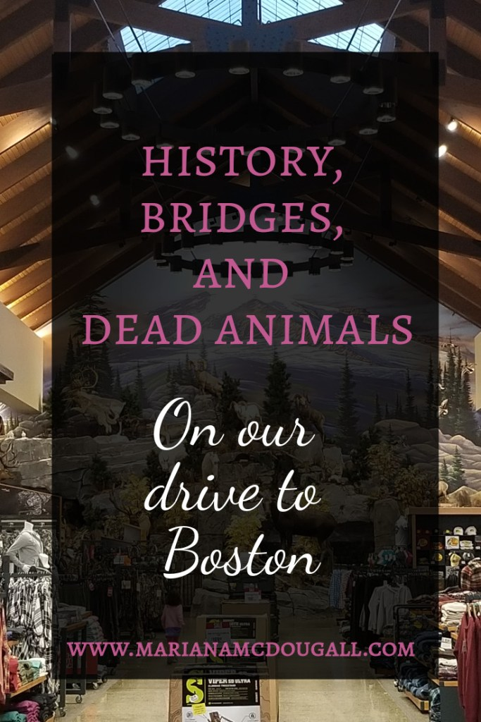 History, Bridges, and Dead Animals on our drive to Boston, www.marianamcdougall.com, picture of Cabela's and taxidermy inside store.