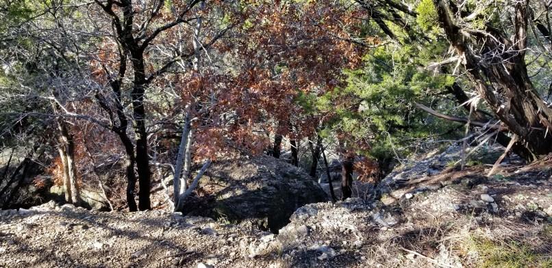 Dinosaur Valley State Park Dinosaur Footprint Trail