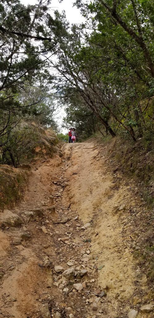 Trail at Garner State Park