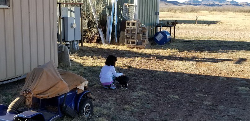 A 4-year-old girl crouches down to pet a black and white kitten.