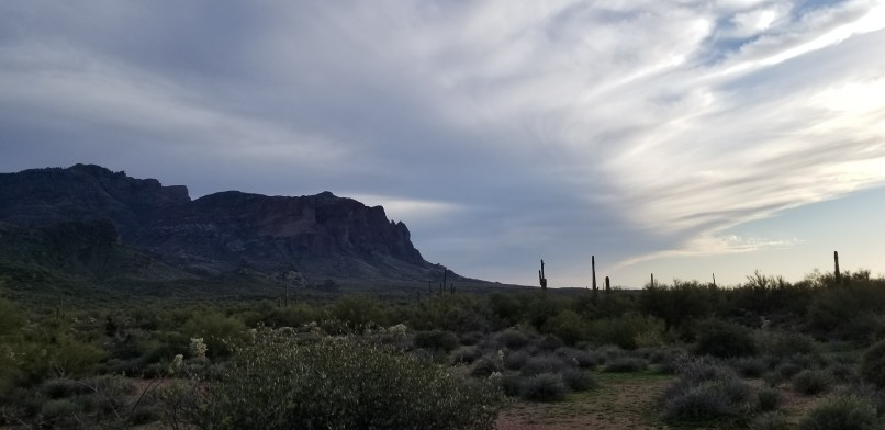 mountain view from horse trails boondock trail. A mountain is on the left, with white clouds above on the right, and saguaro cati below.