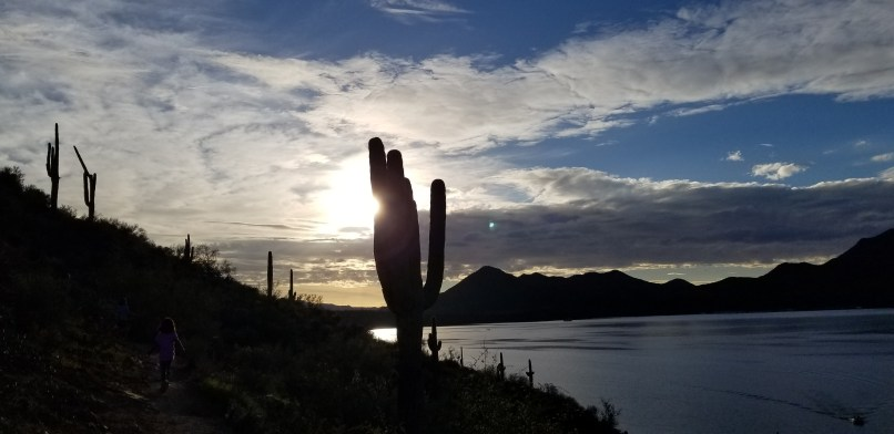 4-year-old is on the left, walking down a trail. To her right is a Saguaro cactus, and the sun is peeking behind it. To the far left there is a lake. A mountain can be seen in the distance