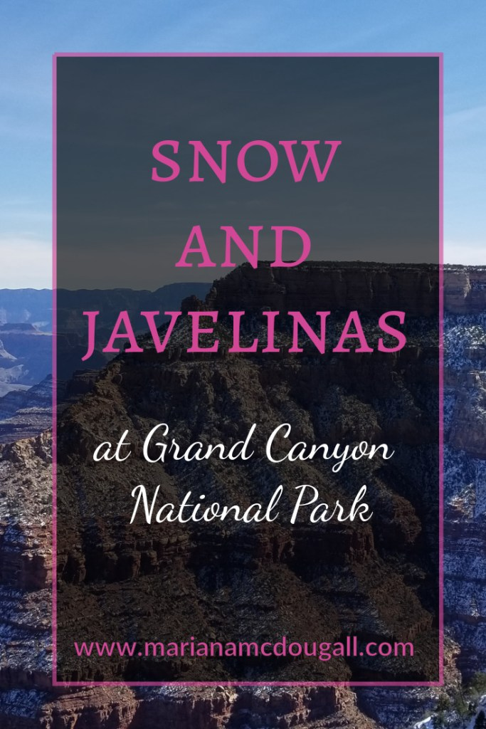 The beauty of the Grand Canyon is too immense to be described in words. You will be amazed at the magnitude of the canyon. And if you are lucky, you might even see a javelina.