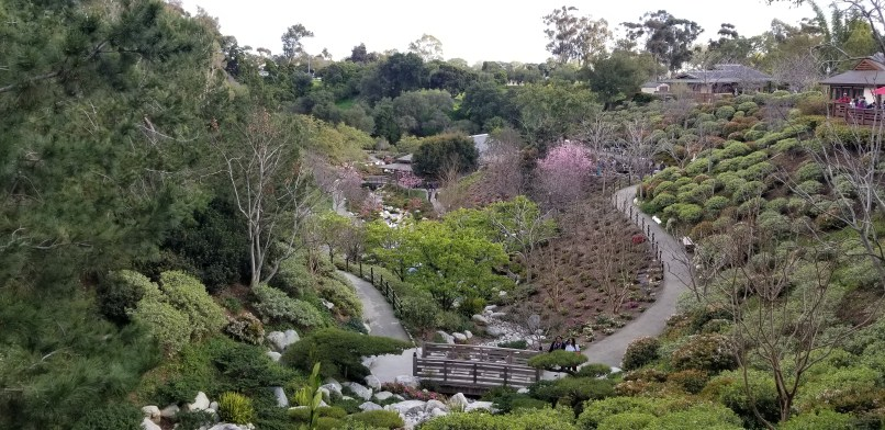 View of Friendship Garden at Balboa Park shows trees, pathways, and flowers.