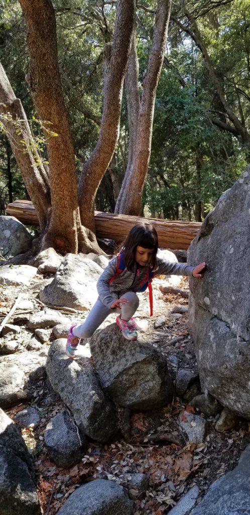 4-year-old girl climbing a rock at Yosemite National Park