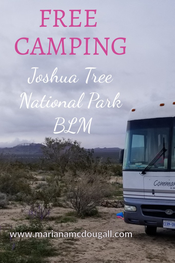 Free camping Joshua Tree National Park, www.marianamcdougallcom. Photo of RV in BLM