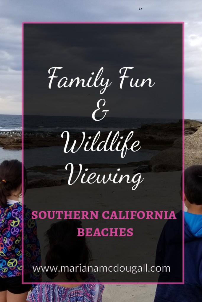 Family Fun & Wildlife Viewing in Southern California beaches, www.marianamcdougall.com. Picture of children looking at seals from a distance.