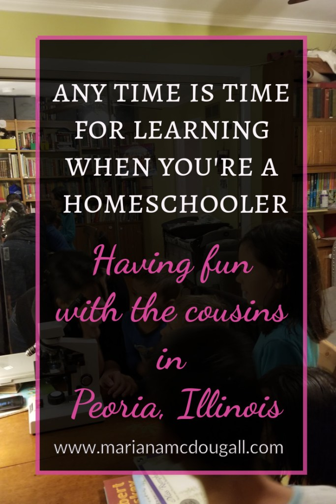 Any time is time for learning when you're a homeschooler. Having fun with the cousins in Peoria, Illinois.