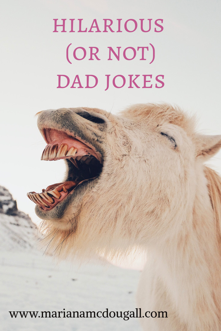 Hilarious (or not) dad jokes, www.marianamcdougall.com. Picture of a white horse hat looks like it's laughing.