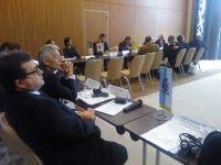Sedinta AGA a euroregiunii DKMT (Dunare-Kris-Tisa-Mures), 2013 3