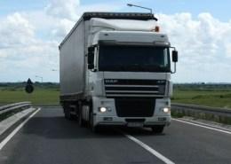 Camion - Foto Sursa de Vest
