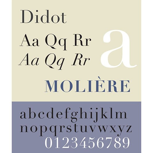 Carattere tipografico Didot. Dizionario di grafica di Marianna Milione