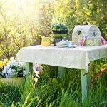 Flere fine sommertips – 10 spiselige og dekorative tips