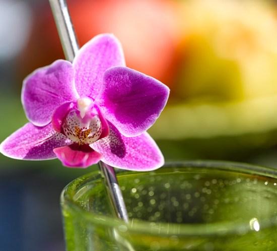 Drinken er pyntet til sommerfesten
