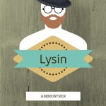 [Aminosyrer] Lysin