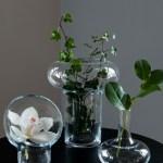 Vaser for klatring og støtte