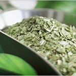 GUIDE: Tørkede urter i maten