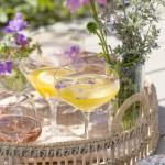 10 fristende sommerdrinker