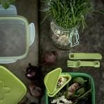 Grønnere lunsj – grønt i matpakke, termos og matboks