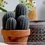 DIY: Søte kaktuser som garantert ikke trenger vann!