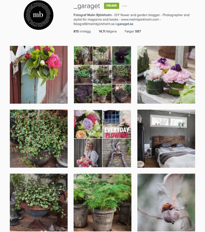 Mariannes blogg - denne ukas nye følgere på Instagram 02