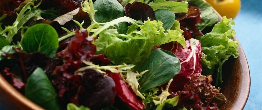 mesclum-salat-blandet-salat