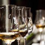 Fire gode viner til årets fårikål