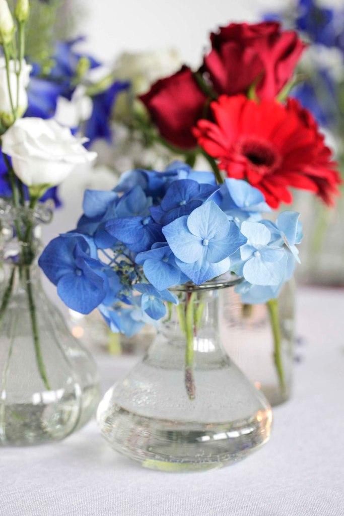 Hvilke blomster finnes i rødt, hvitt og blått?