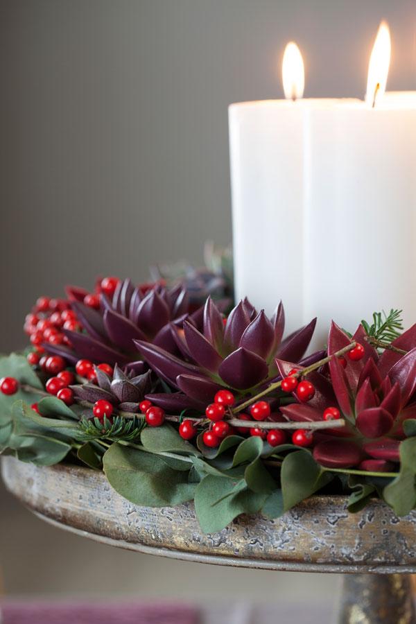 Krans med røde echeveria og vintergrønt.
