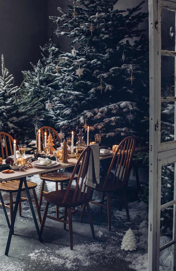 Borddekking i en skog av juletrær - inne...