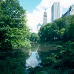 Central Park, New York, USA.