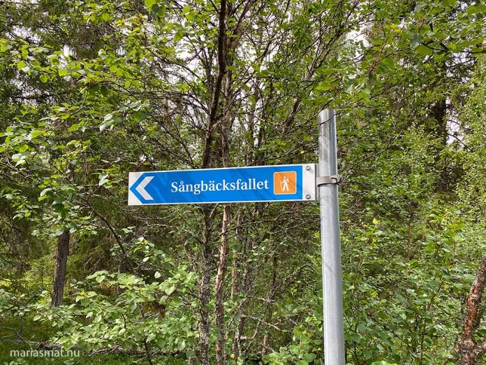 Sångbäcksfallet i Klövsjö