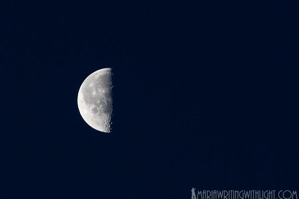 martha's vineyard photography, half the moon