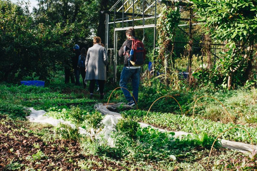 students learning in a garden