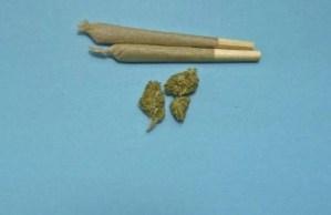 marijuana ready for use