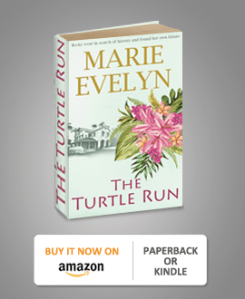 turtle run book amazon paperback or kindle