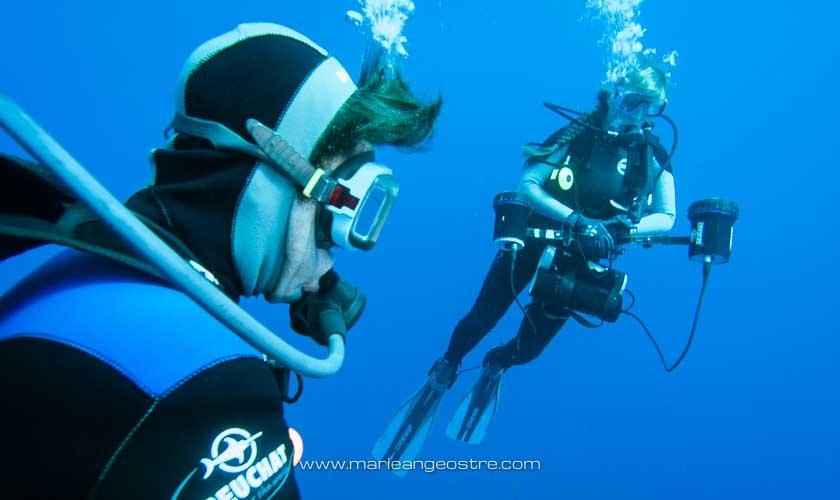 Brésil, plongée Fernando de Noronha René Heuzey et Marie-Ange Ostré © Francis Le Guen