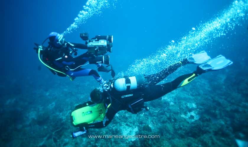 Guadeloupe, plongée en Réserve Cousteau © Marie-Ange Ostré