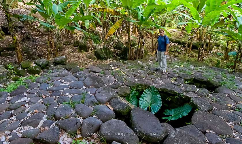 Site historique des Marquises, pae pae, île de Nuku Hiva © Marie-Ange Ostré