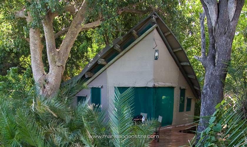 Botswana, l'une des tentes de luxe à Abu Camp © Marie-Ange Ostré