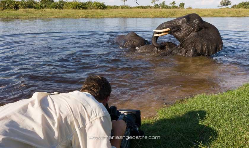 Botswana, Pierre Stine filme le bain des éléphants dans l'Okavango © Marie-Ange Ostré