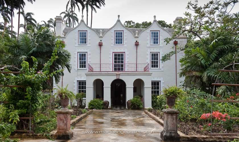 île de la Barbade, Saint Nicholas Abbey © Marie-Ange Ostré