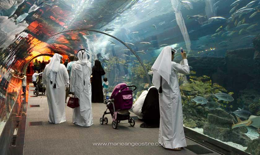 Emirats Arabes Unis, aquarium Dubai Mall © Marie-Ange Ostré