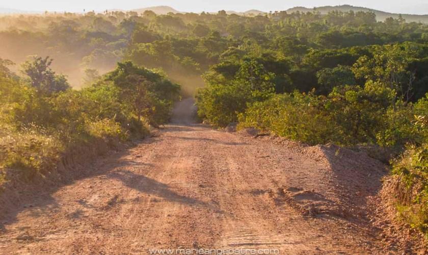 Brésil, paysage du Mato Grosso do Sul © Marie-Ange Ostré