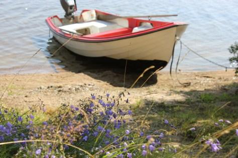 Båten_2