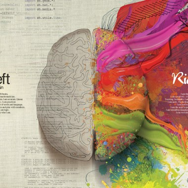 Left-Right-Brain